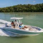 Boston Whaler 250 Dauntless_navigation