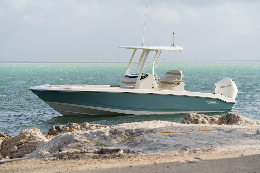 Boston Whaler 250 Dauntless_mouillage